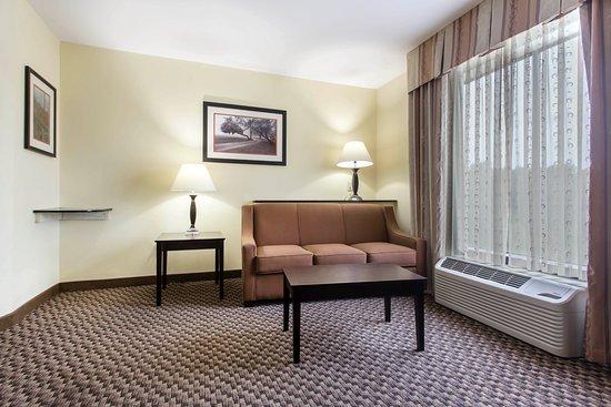 Κλίντον, Νότια Καρολίνα: Sleeper sofas in every room