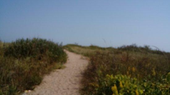 Zion, IL: Illinois Beach State Park dunes
