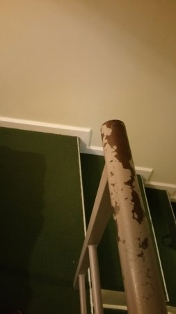 Room Mate Vega: La barandilla dentro de la habitación que todo el mundo toca
