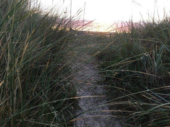 Nairn Beach: The dunes at dawn