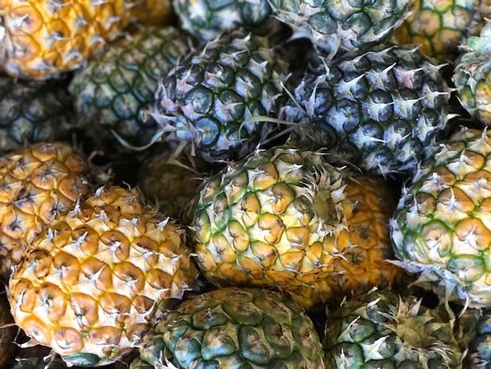 Makawao, Χαβάη: A TON of pineapples - Maui Pineapple Tours