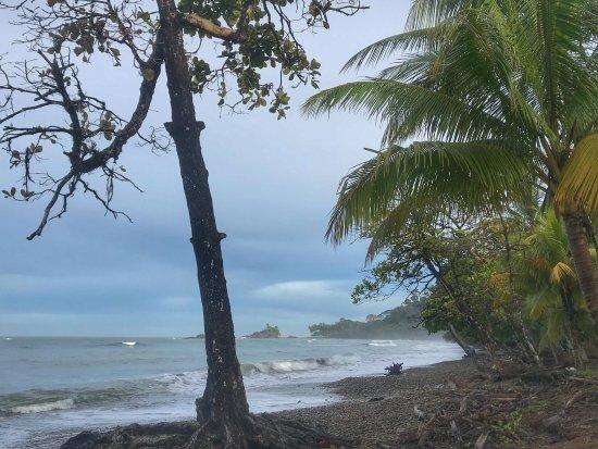Dominical, Κόστα Ρίκα: photo1.jpg