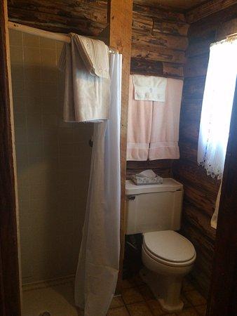 Lake City, CO: Cabin 8