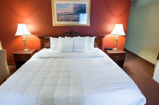 South Saint Paul, MN: Guest room