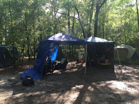 Spirit of the Suwannee Music Park: Primitive Camping