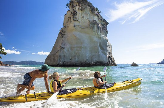North Island 6-Day Adventure Tour...