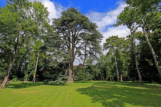 Chateau de La Celle Guenand: Celle-Guenand Garden