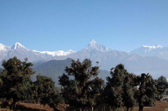 Tour Privado Kathmandu Pokhara...
