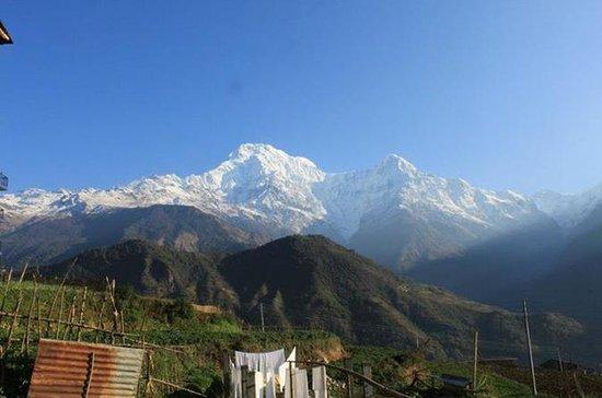 Privat Short Trek til Annapurna...