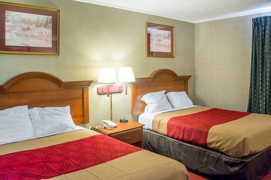 Newton Falls, Οχάιο: Guest room