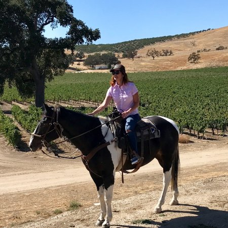 Creston, CA: Vineyard ride at Cass Winery