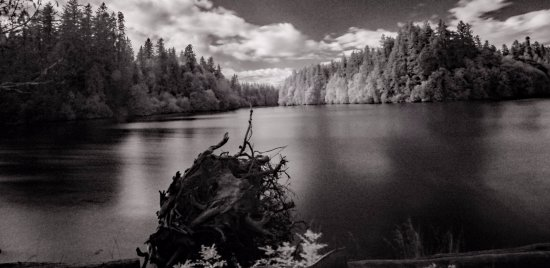 Woodard Bay Natural Resources Conservation Area: Woodard Bay - infrared