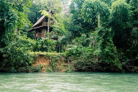 Our Jungle Camp - Eco Resort