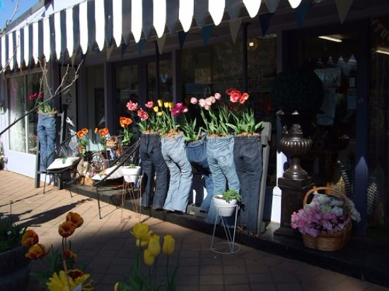 "Nannup, Austrália: ""Shop display: Jeans and Tulips"""