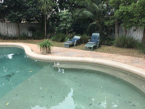 Gorokan, Australia: photo7.jpg
