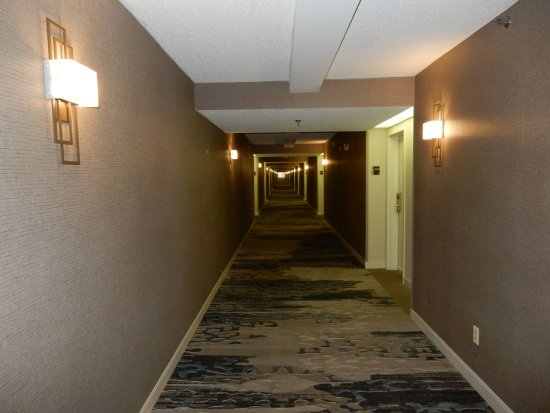 DoubleTree by Hilton Hotel Boston - Andover: Couloir