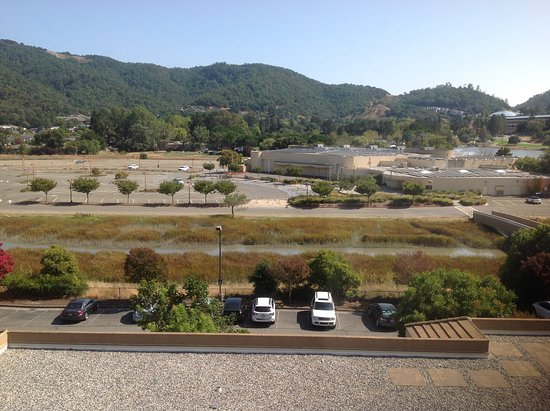 Embassy Suites by Hilton Hotel San Rafael - Marin County / Conference Center: View from the room