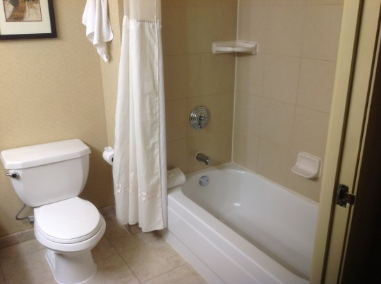 Embassy Suites by Hilton Hotel San Rafael - Marin County / Conference Center: Bathroom with toilet & shower over the bath