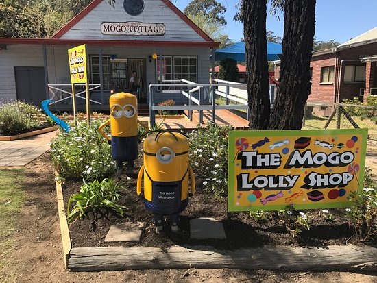 ‪The Mogo Lolly Shop‬