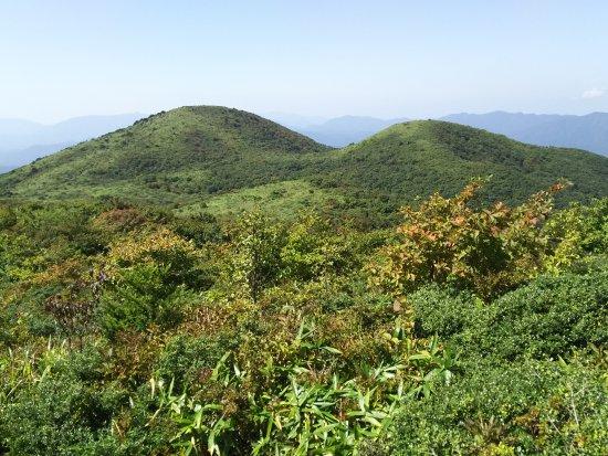 Mt. Dogo