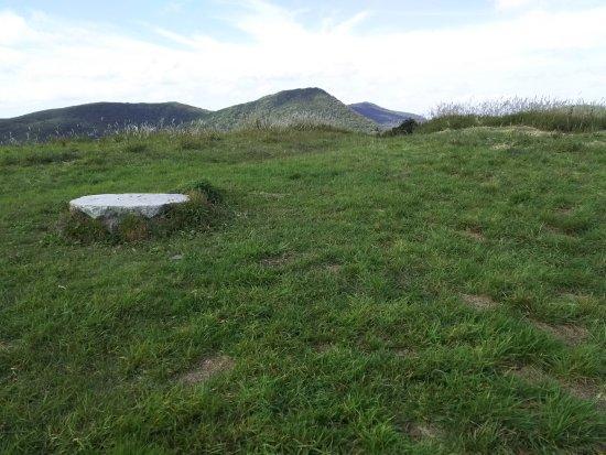 Shobara, Jepang: なだらかな草原の竜王山頂上付近