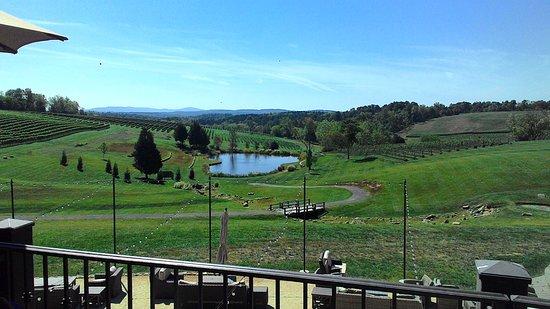 Leesburg, VA: Winery