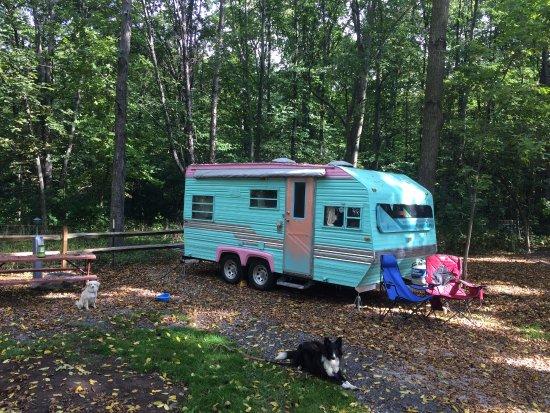Farmington, NY: Our site