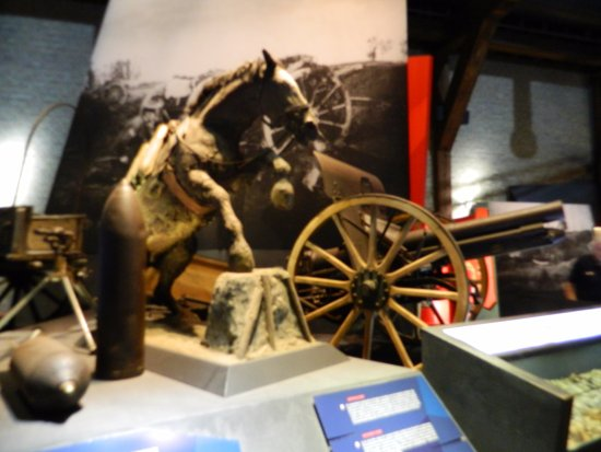 Museo In Flanders Fields: And the story of the horses
