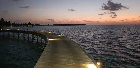 Moofushi Island: 20170926_193245_large.jpg