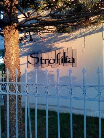 Kalogria, Grecia: Strofilia