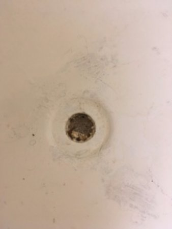 Travel Inn Petersburg Virginia: I Did Not Shower, Drain Is Clogged With Hair ?
