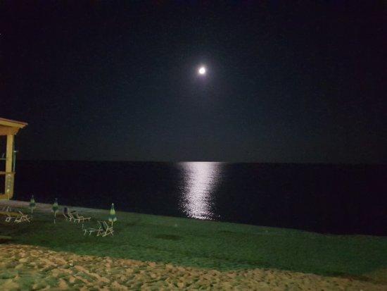 Ristorante Calypso : Veduta esterno locale