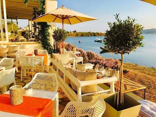 Pounta, กรีซ: received_10203771670050216_large.jpg