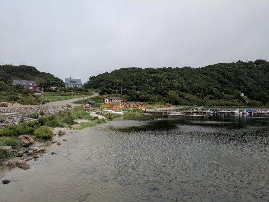 Sandvig-billede