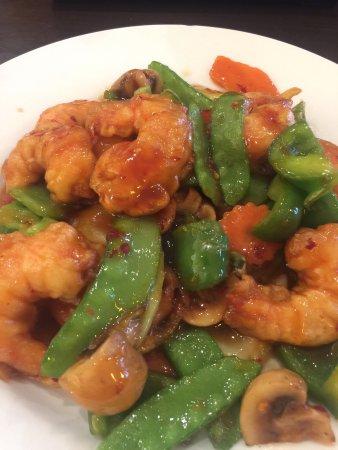 Toyo asian cuisine sushi restaurant 7720 n wickham rd for Asian cuisine melbourne