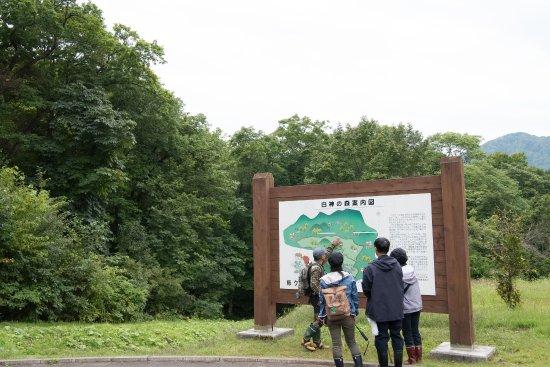 Aomori Prefecture Photos Featured Images Of Aomori