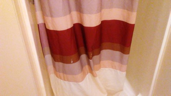 Pilgrim Inn and Cottages: paint splatters on shower curtain
