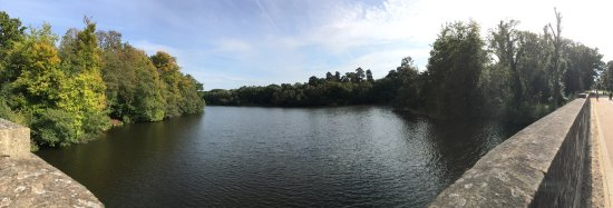 Virginia Water, UK: photo4.jpg
