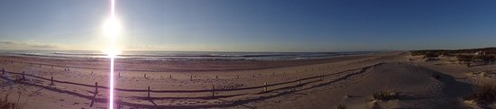 Assateague Beach: песчанная дюна