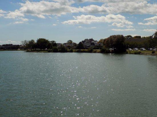 Hewitt Wellington : Beautiful Lake views