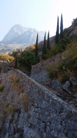 Kotor Municipality, Montenegro: kotor
