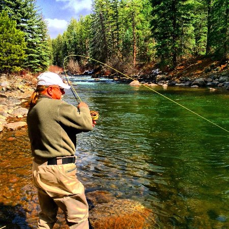 San juan river new mexico all you need to know before for Fishing in durango co