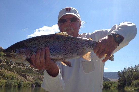 San Juan River: Fly Fishing 5