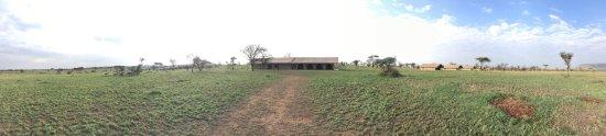 Luxury camp in Serengeti