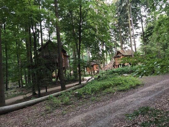 bild von erlebnispark tripsdrill natur resort cleebronn tripadvisor. Black Bedroom Furniture Sets. Home Design Ideas