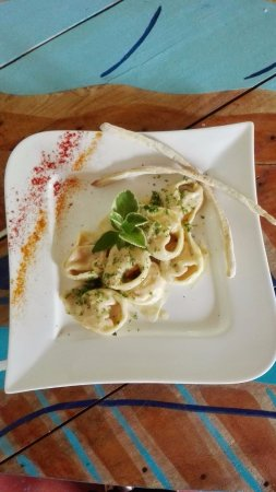 Nicoya, Costa Rica: Trout Tortelloni...mmmh