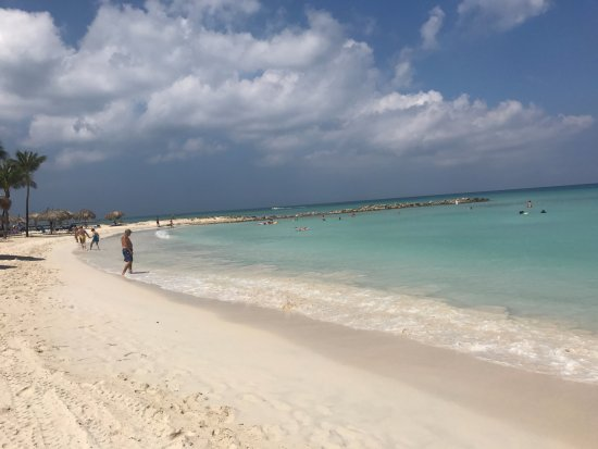 Divi aruba phoenix beach resort updated 2017 prices reviews palm eagle beach tripadvisor - Divi aruba beach ...