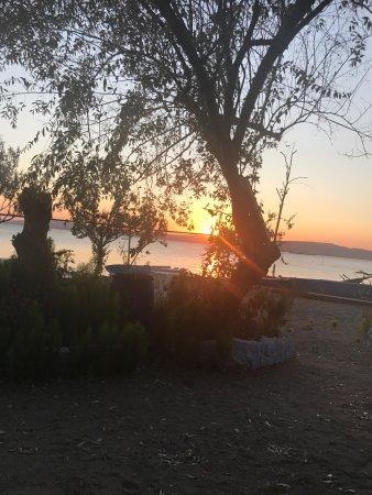 Lepseki, Tyrkiet: Dalyan Balık