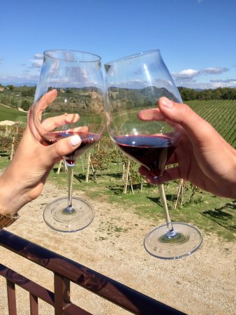 Guido's Tours - Wine Tours in Tuscany: photo8.jpg