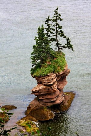 Fundy Trail Parkway: Fownes Head